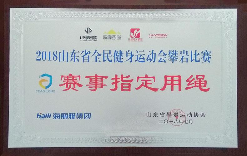 山东省全民健身运动会攀岩比赛赛事指定用绳
